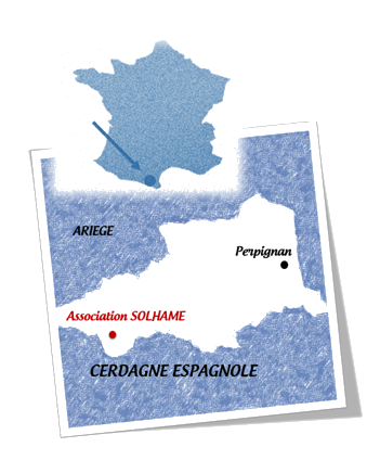 carte de la situation bleue